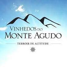 Монте Агудо